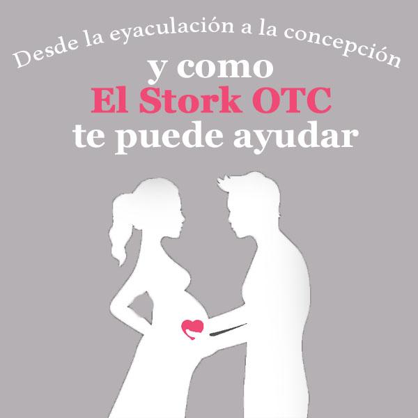 De eyaculación a embarazo y como el Stork OTC te puede ayudar.