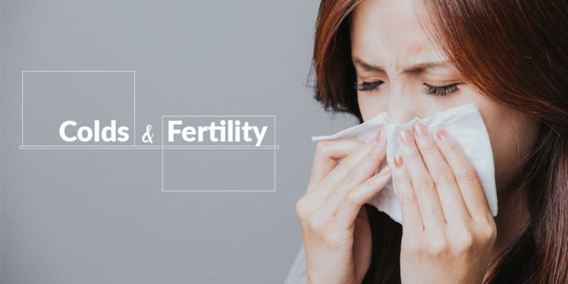 cold and fertility