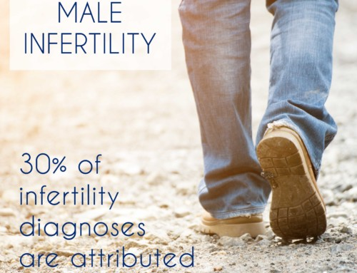 Male Infertility 101