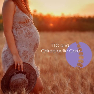 Trying to Conceive? Why You Might Want To Visit The Chiropractor