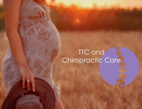Why You Might Want To Visit The Chiropractor When TTC